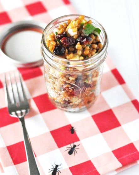Post image for Summertime Picnic Food Ideas: Wheat Berry Apple Salad in a Jar