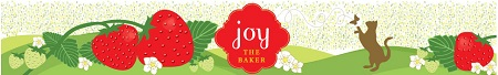Post image for 10 Things You Didn't Know About Me with Joy the Baker